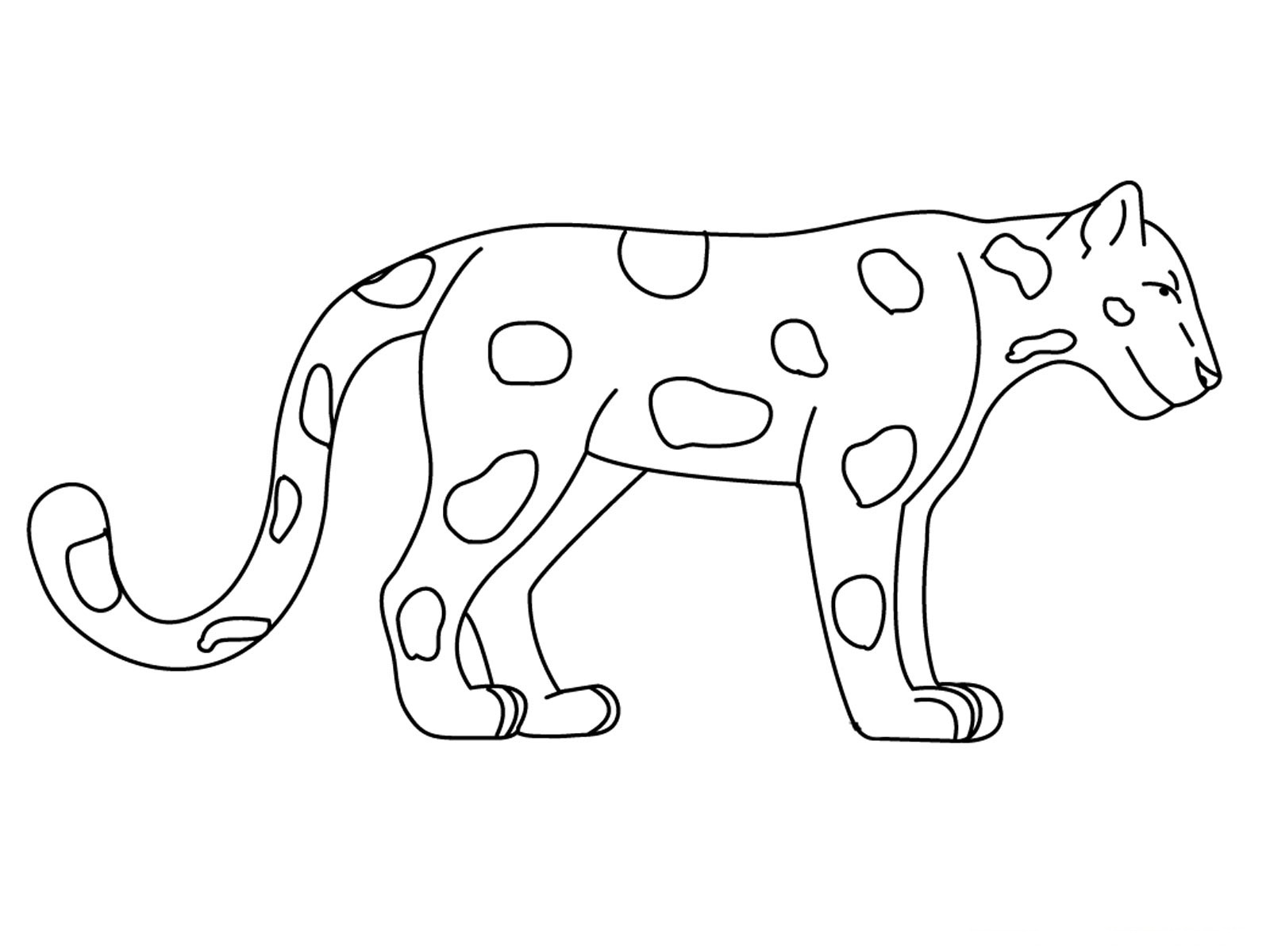 Animals Coloring Pages | Coloring Kids