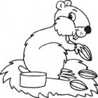 Animals Coloring Pages