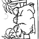 Camels-coloring-page-6