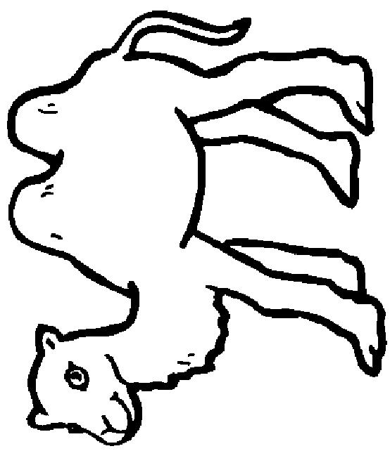 Camels-coloring-page-7