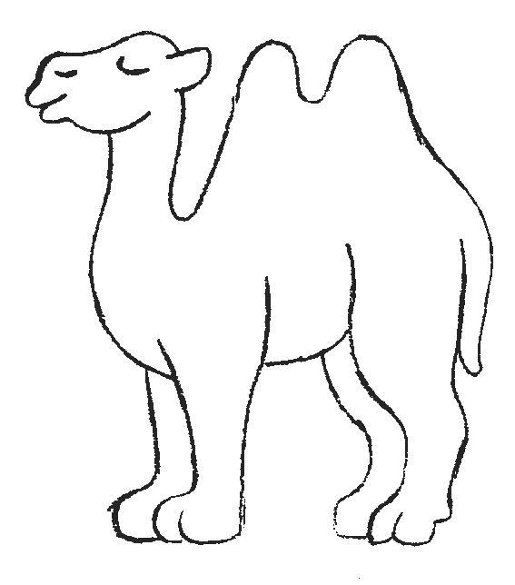 Camels-coloring-page-9