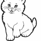 Cats Coloring Pages