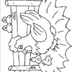 Chickens-coloring-page-4