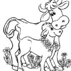 Cows-coloring-page-1