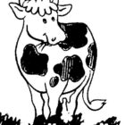 Cows-coloring-page-25