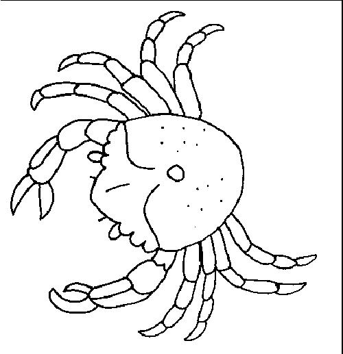 Crabs-coloring-page-11