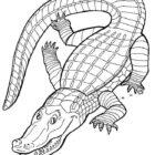 Crocodiles-coloring-page-9