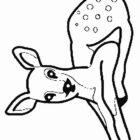 Deers-coloring-page-1