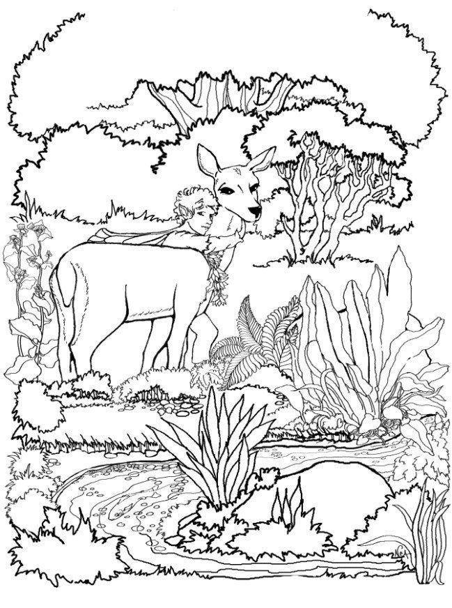 Deers-coloring-page-14