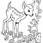 Deers-coloring-page-3
