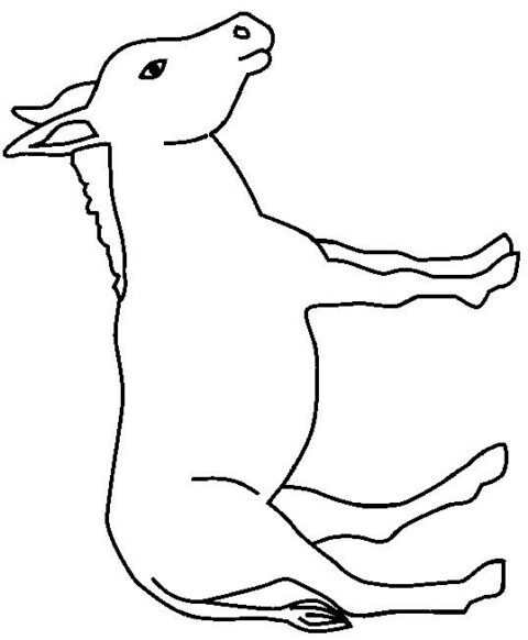 Donkeys-coloring-page-11