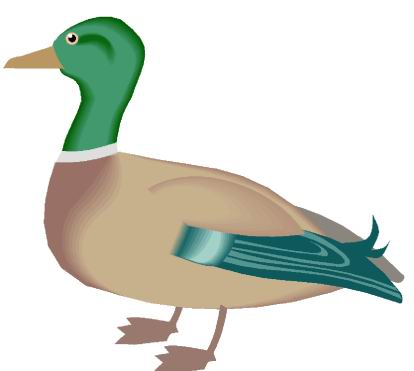 Ducks Coloring Pages