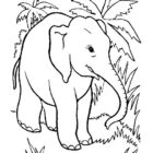 Elephants-coloring-page-8
