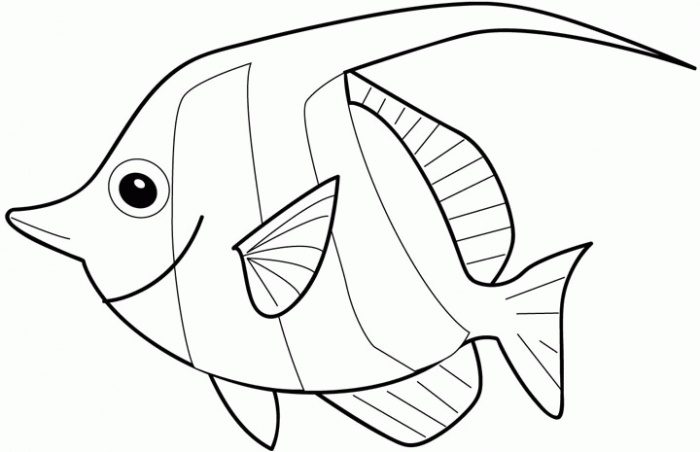 download fish coloring pages 17