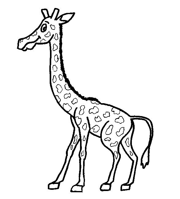 Giraffes-coloring-page-16