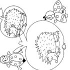 Hedgehogs-coloring-pages-14