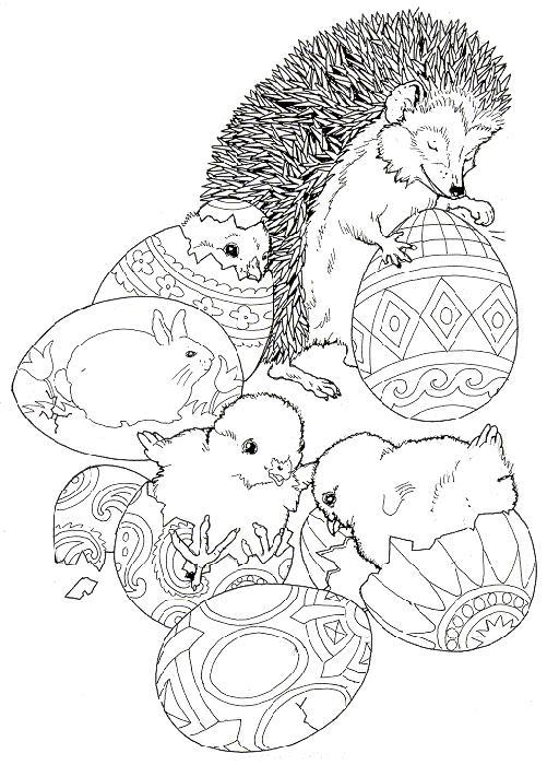 Hedgehogs-coloring-pages-18