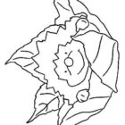 Hedgehogs-coloring-pages-2