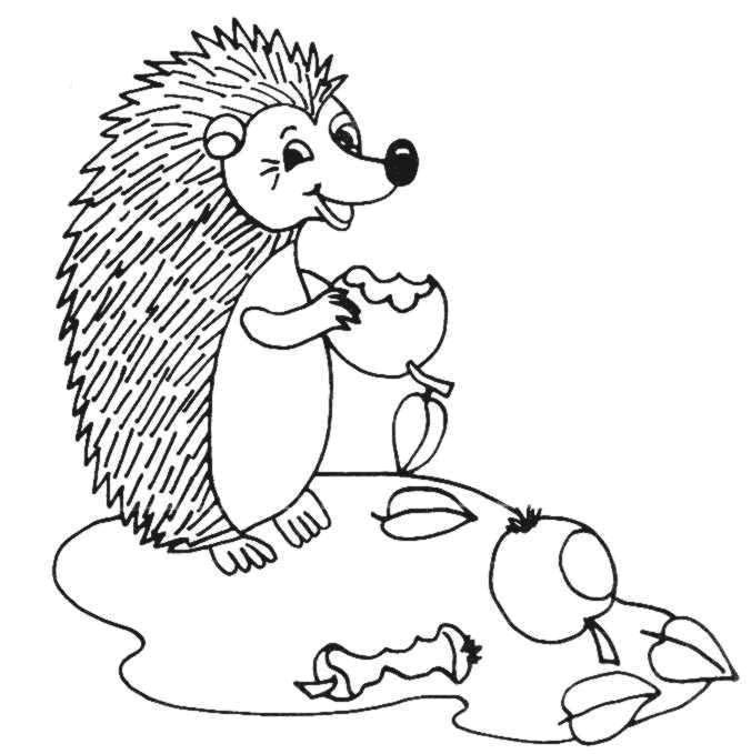 Hedgehogs-coloring-pages-20
