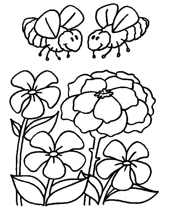 Insects-coloring-page-10