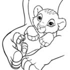 Lions Coloring Pages