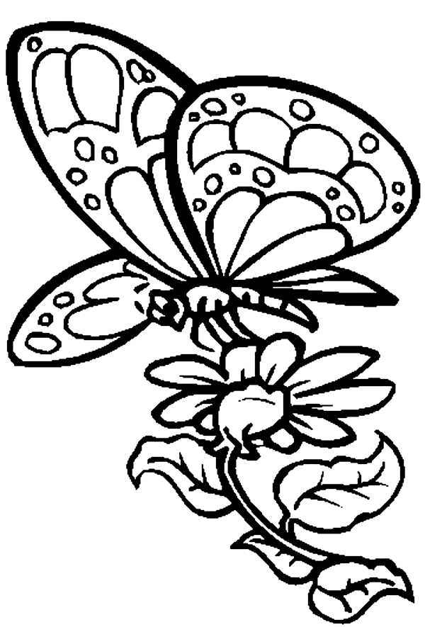 Pancake Day Coloring Pages Coloring Kids Pancake Colouring Pages