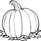 Pumpkin Coloring Pages (1)