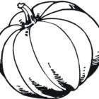 Pumpkin Coloring Pages (8)