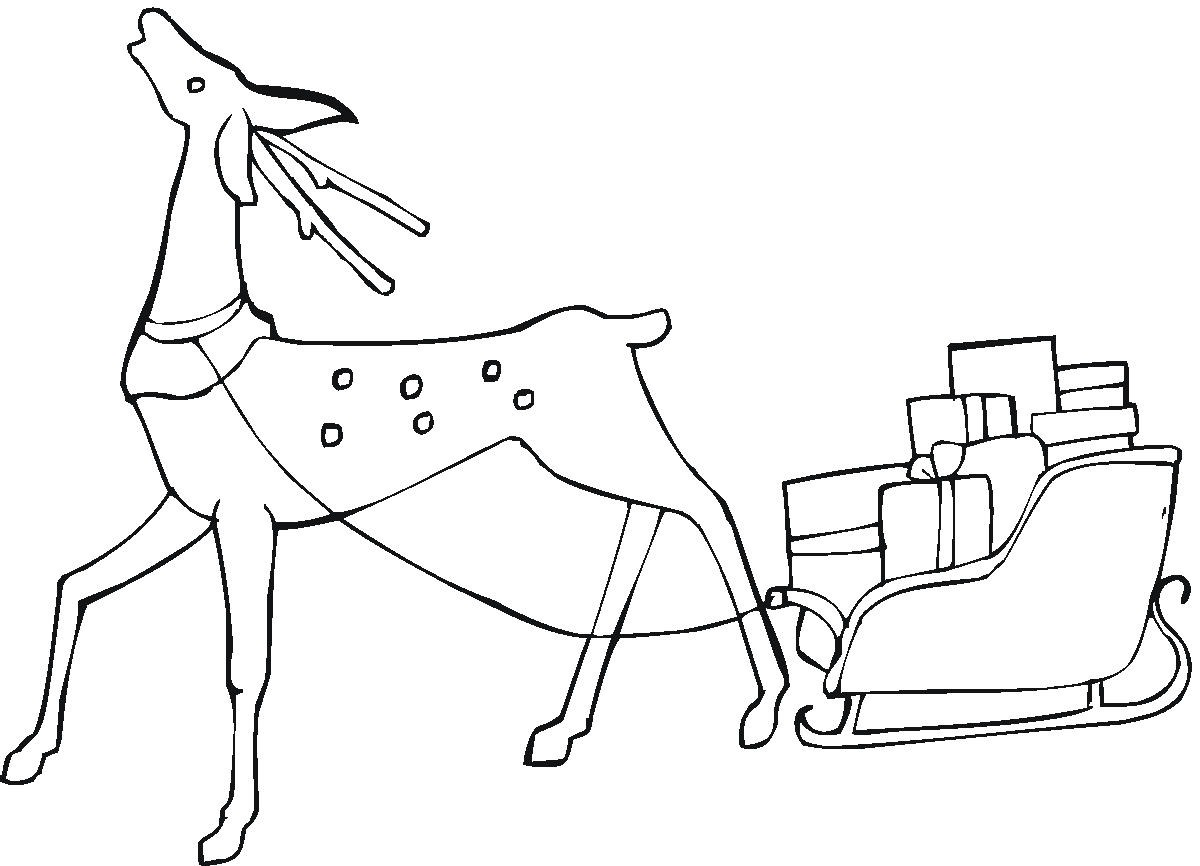 Reindeer Coloring Pages - Coloring Kids