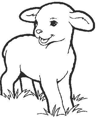 Sheep-coloring-page-13