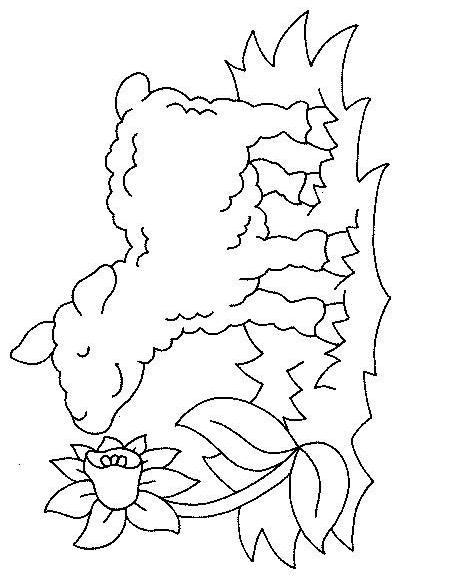 Sheep-coloring-page-46
