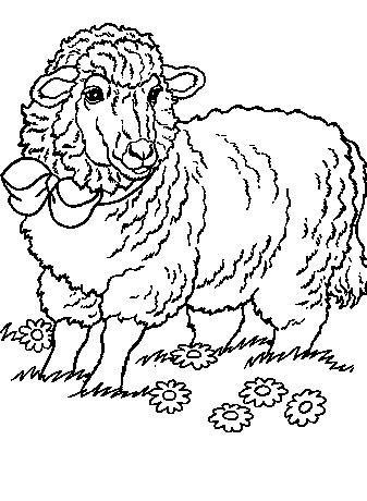 Sheep-coloring-page-55