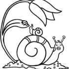 Snails-coloring-page-7
