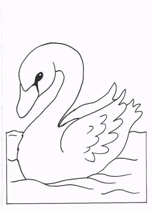 Swans Coloring Page 2 Coloring Kids