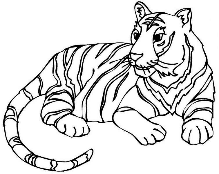 tigers coloring pages - Coloring Pages Tigers Print