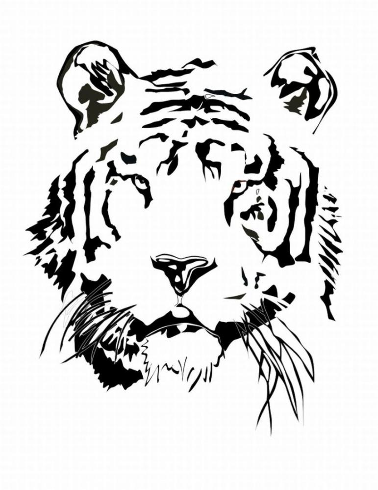 Tigers Coloring Pages - Coloring Kids