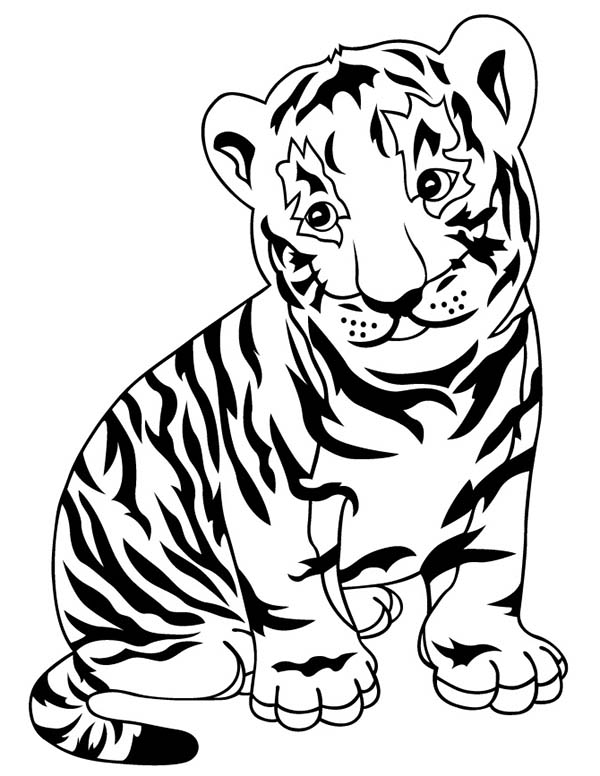 Tigers Coloring Pages Coloring Kids Tiger Coloring Pages To Print