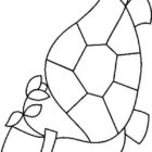 Turtles-coloring-book-11