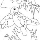Turtles-coloring-book-16