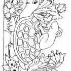 Turtles-coloring-book-17