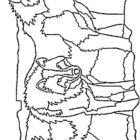 Wolves-coloring-page-13