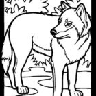 Wolves-coloring-page-20