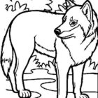 Wolves-coloring-page-26