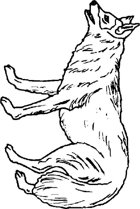 Wolves-coloring-page-6