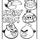Angry Birds Coloring Pages (13)
