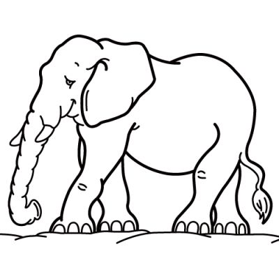 Animal Coloring Pages (15)