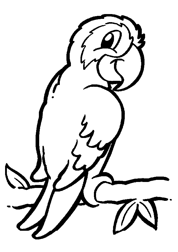 animal coloring pages 18 coloring kids - Colouring Images Of Animals