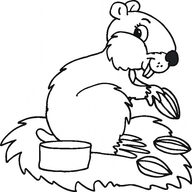 Animal Coloring Pages (25)