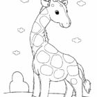 Animal Coloring Pages (7)