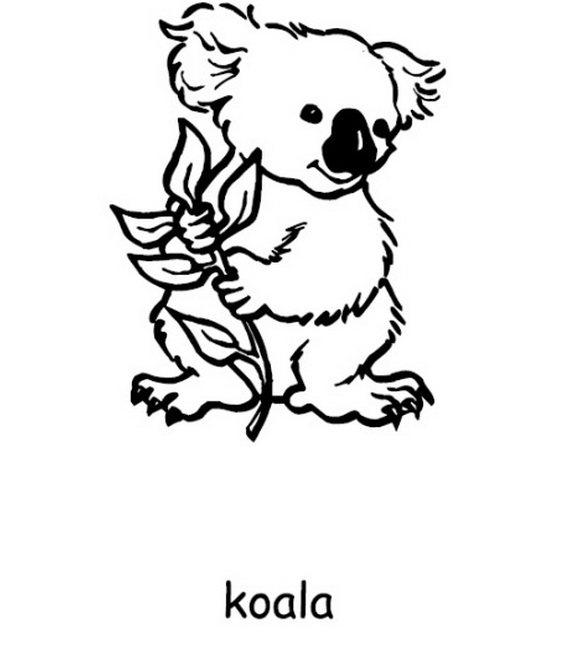 Australia Day Coloring Pages 14 Coloring Kids